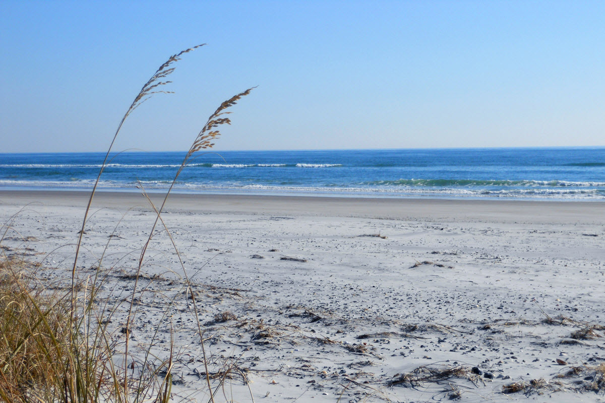 View from the dunes of undeveloped Bear Island